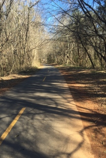 I spent my lunch break walking a trail by the office. Vitamin D for the win.